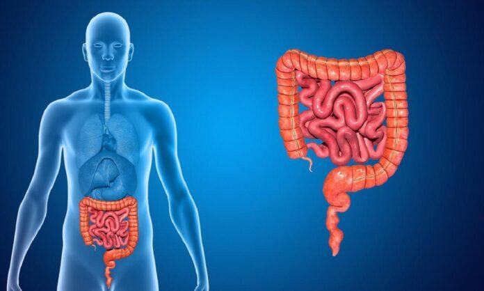 Дисбактериоз кишечника – боремся и побеждаем!