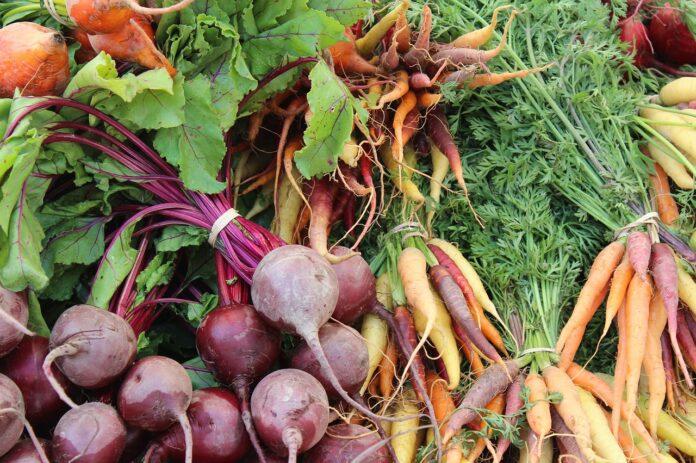 Овощная нотка – свекла и морковка