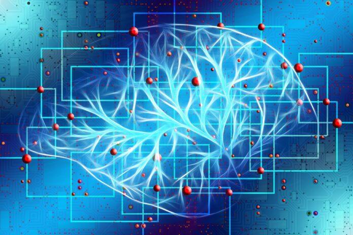 Мозг – удивительные факты