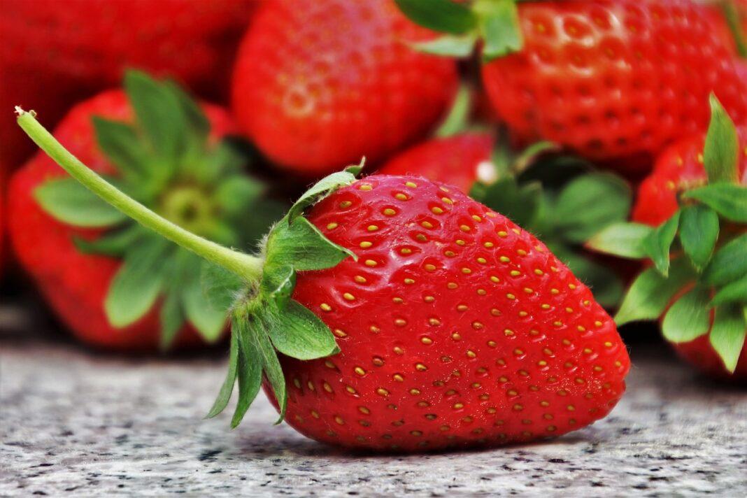 Что же за ягода – это клубника?